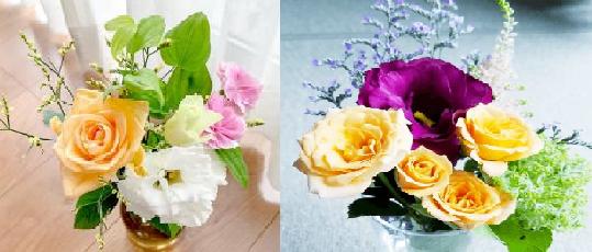 農水省『花いっぱいプロジェクト』花屋の定期便購入無料クーポン情報も